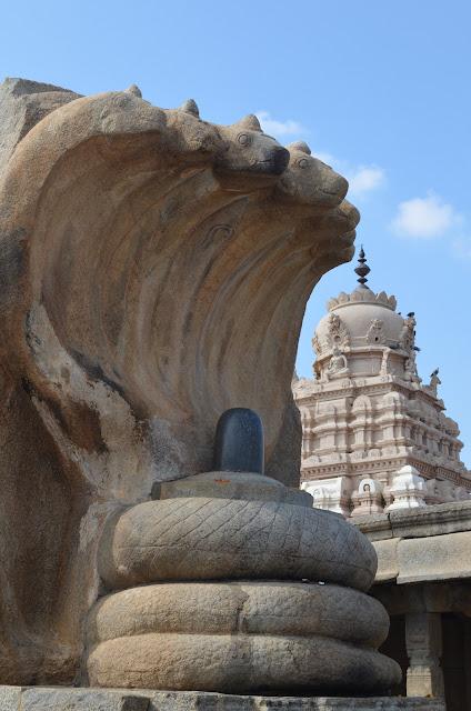 Statue of Naga sheltering Shivalingam, Lepakshi, Andhra Pradesh