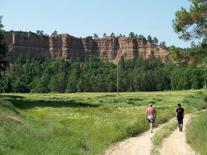 Les cingleres rogenques del Pla del Corral des de l'aiguabarreig de les rieres Gavarresa i Segalers