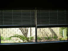 Blinds Install