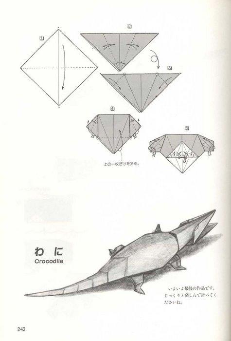 origami plus jacar