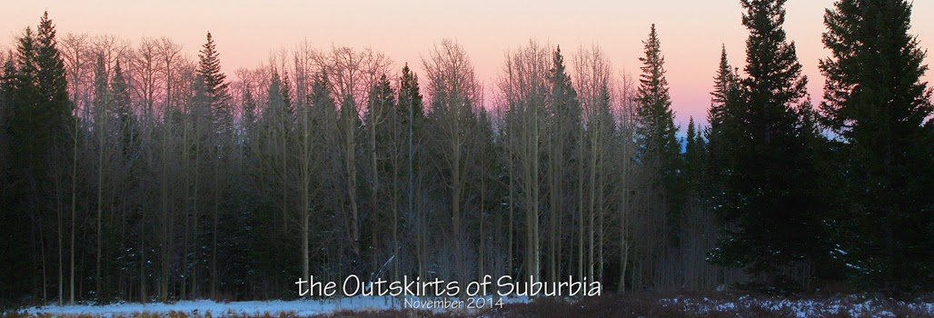 The Outskirts of Suburbia