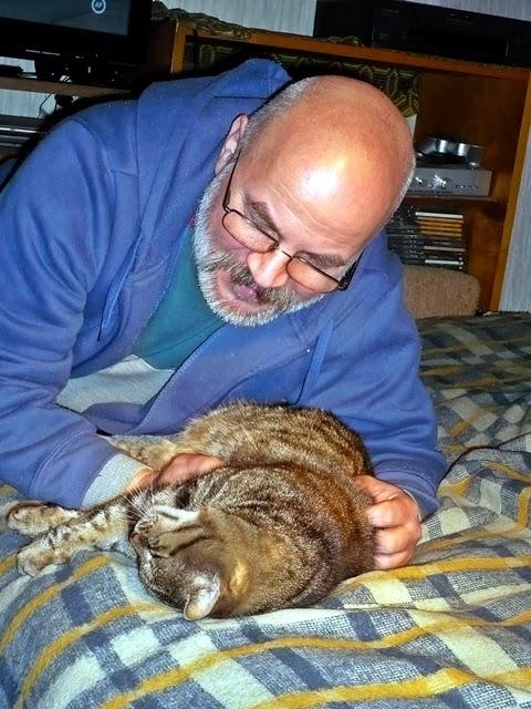 """Képtalálat a következőre: """"macska hízeleg kép"""""""