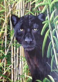 La Grande Panthère Noire histoire du soir: la grande panthère noire