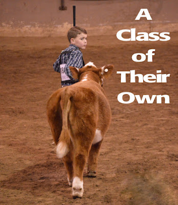 A Class of Their Own, shared by 4 Wiley Farm