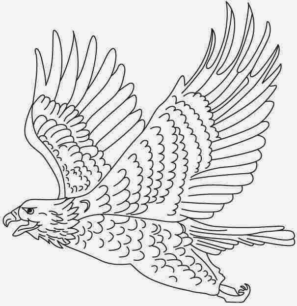 eagle cartoon coloring pages - photo #18