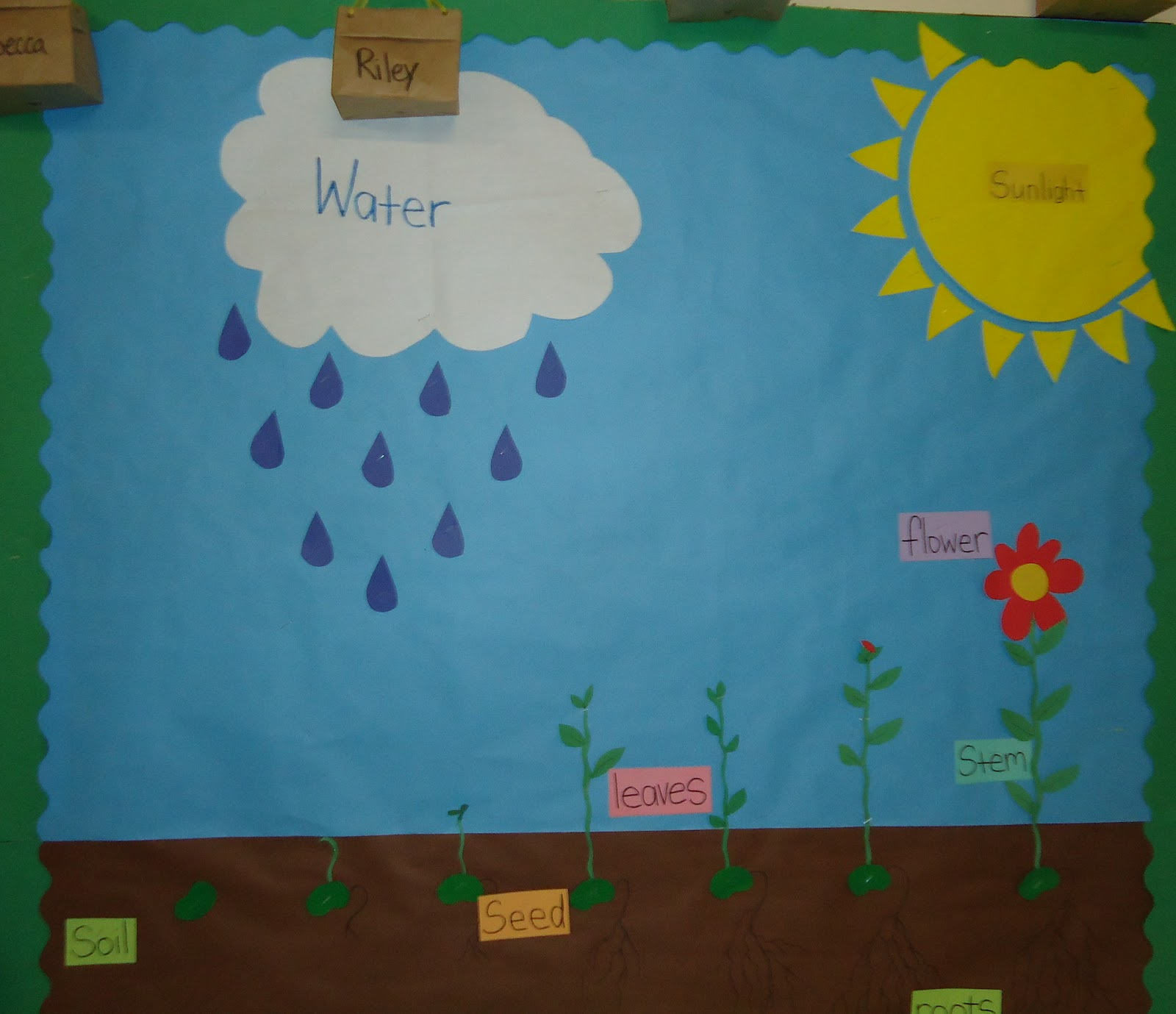 Preschool Spring Bulletin Board Ideas