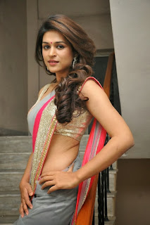 Actress Shraddha Das  Picture Gallery in Saree at Rey Movie Teaser Launch  0042.jpg