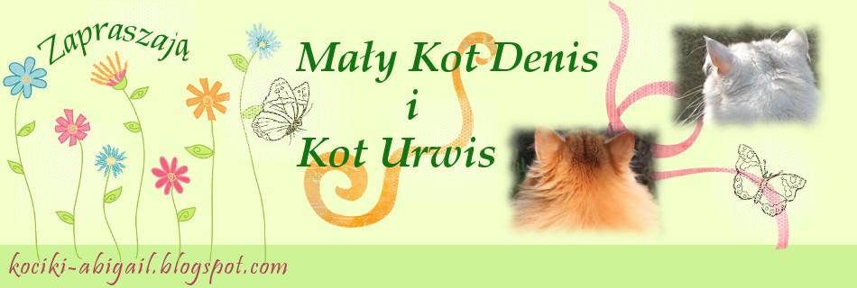 Koty, pies i węże