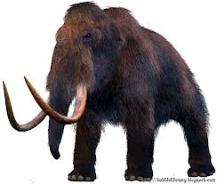 hewan mammoth