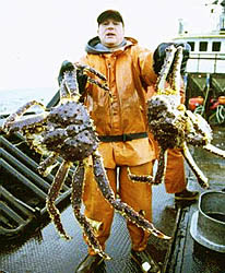 http://dsc.discovery.com/tv/deadliest-catch/