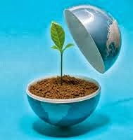 Artikel terbaru pelestarian lingkungan hidup Indonesia