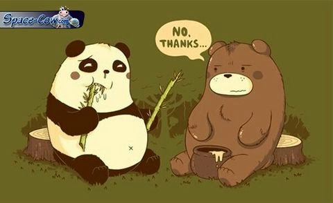 funny bears comics picture