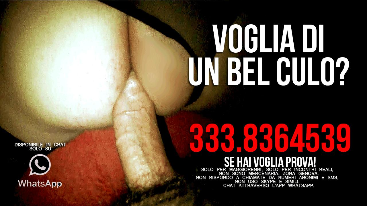canali tv erotici siti incontri per sesso gratis