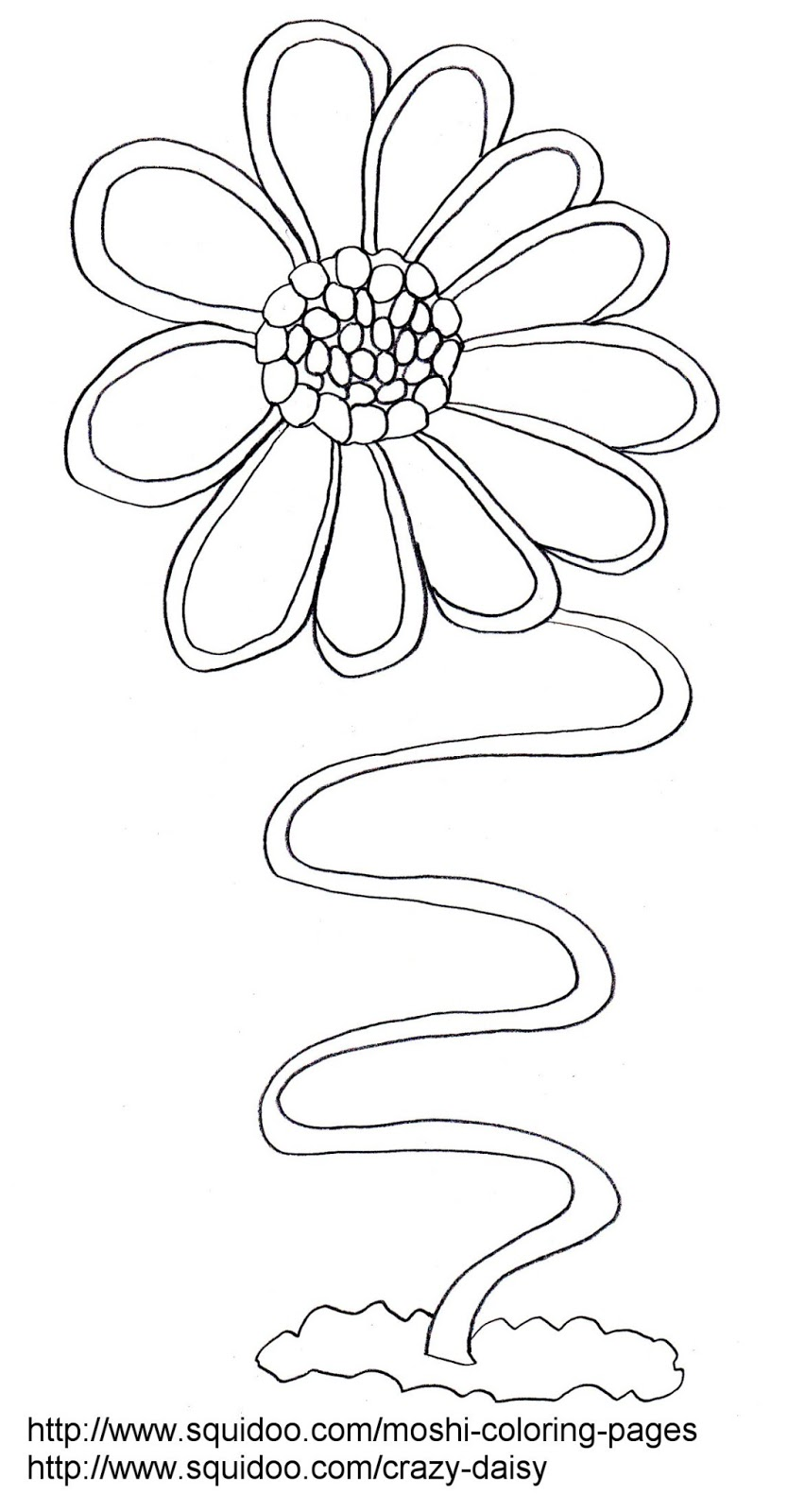 Daisy coloring picture for kid for Daisy coloring page