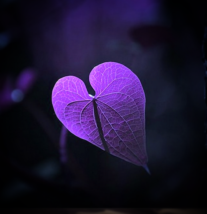 Alzheimer's Love
