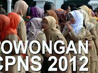 Daftar 14 Tempat yang Buka lowongan CPNS 2012