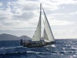Sailing Adventures...