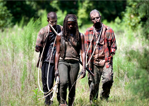 The Walking Dead (4x10)