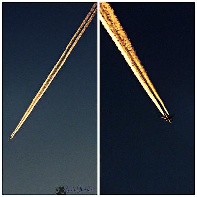 avion deasupra busteni