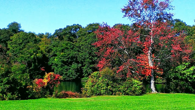 Roger Williams Park in the fall