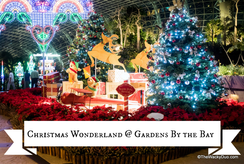 the christmas light up at gardens by the bay is back the beautiful christmas wonderland returns with bigger and brighter lights this years event is