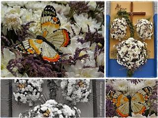 Schmetterlingsdeko von Nova