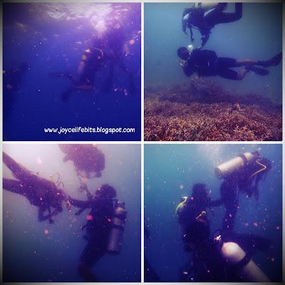 bad buoyancy control floating