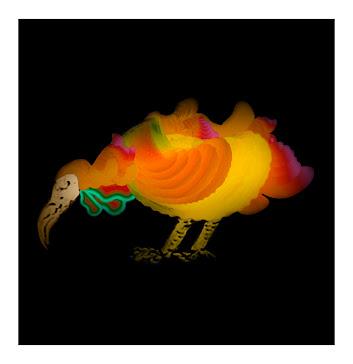 dodos bird