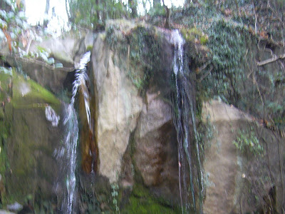 交野市・星田・聖の滝(なすび石の滝)