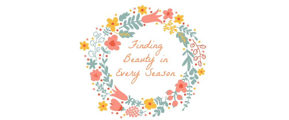 Finding Beauty In Every Season