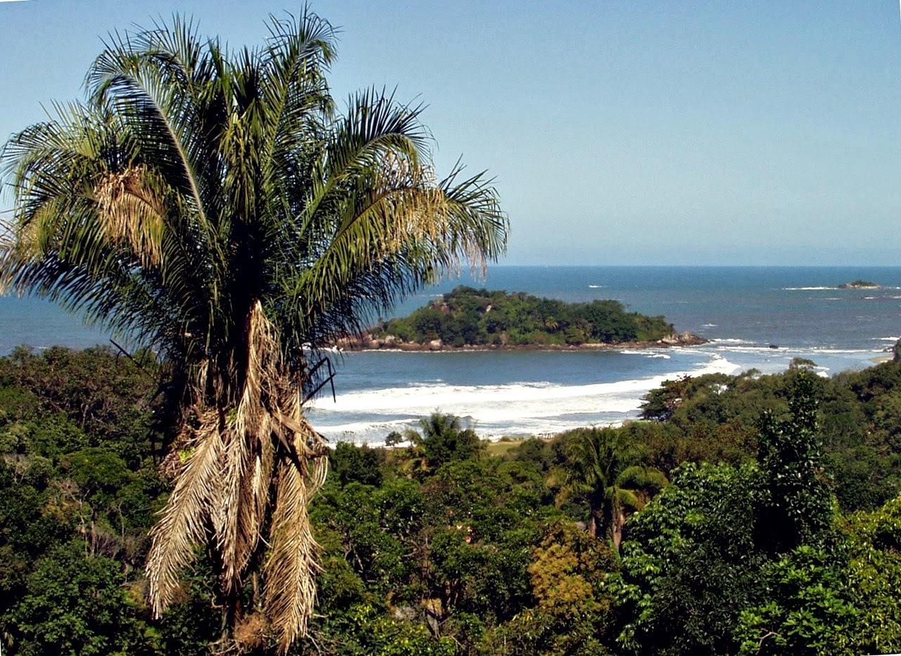 A Prainha Branca abriga uma comunidade caiçara e está localizada na APA Serra do Guararú, o maior conjunto remanescente de Mata Atlântica na Ilha de Santo Amaro, com restingas e mangues preservados. O acesso se dá somente por trilha ou mar.