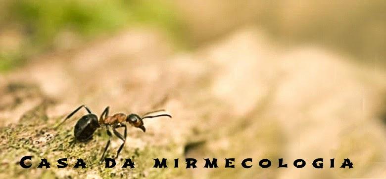 a casa da mirmecologia - mirmecologia