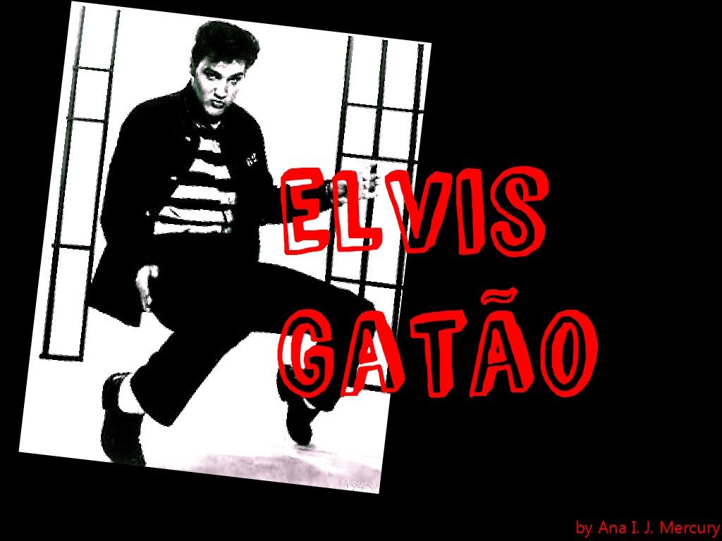 Blog Elis Gatão