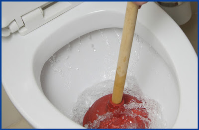 cope with clogged toilet