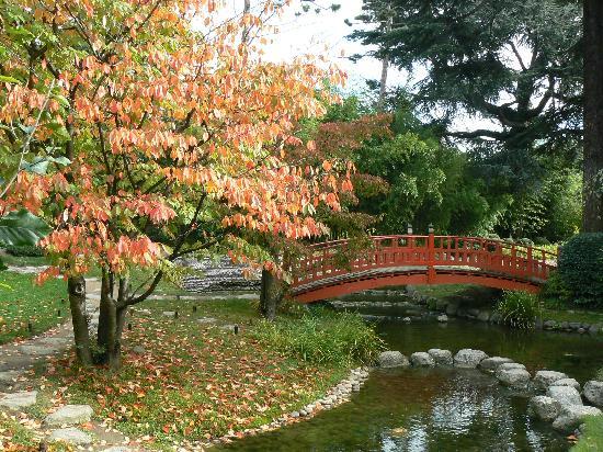 primero que todo el jardn debe estar en un lugar cerrado en un recinto donde se puede controlar como debe ser visto tiene entradas que pueden ser - Jardines Japoneses
