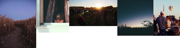 Pat David G'MIC montage aligned images fit horizontal