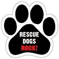RESCUE DOGS ROCK!