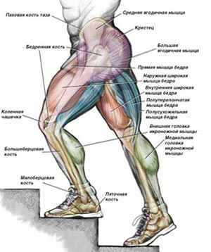 Причины болей в колене у детей