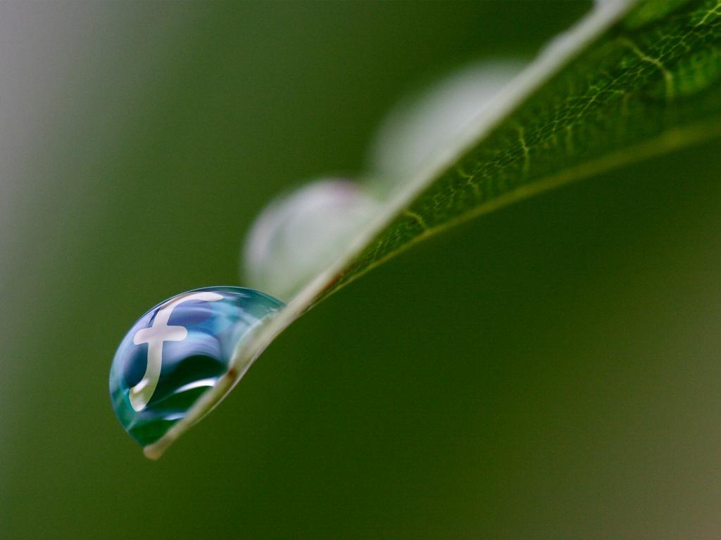 http://1.bp.blogspot.com/-HgS5OAe4Aoo/T3Zs7MsEZPI/AAAAAAAABPs/ErG_s-YfJ_k/s1600/fedora-rain-1024x768.jpg