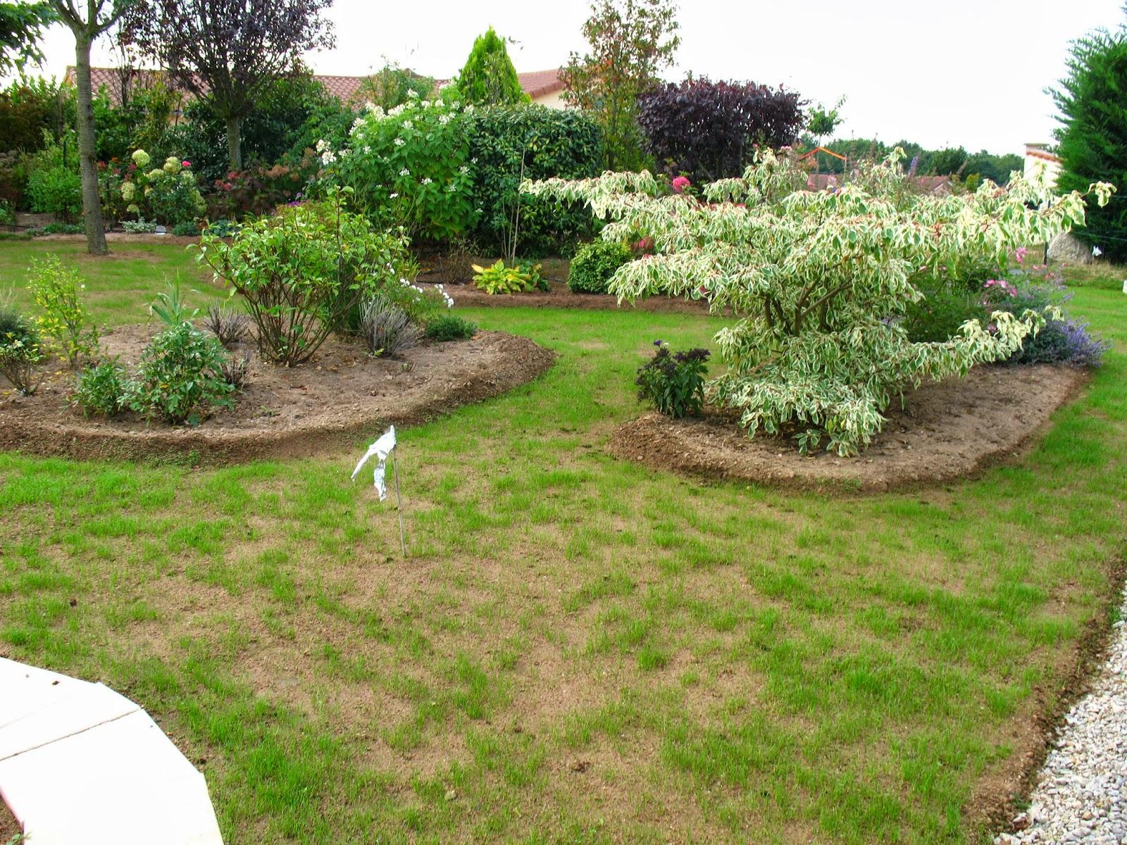 Roses du jardin ch neland l 39 volution d 39 un semis de gazon for Tarif de tonte de pelouse