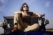 Nisha Kothari latest photos gallery-thumbnail-4