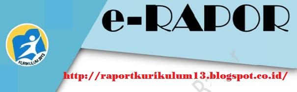 Raport Kurikulum 2013 SD, SMP, SMA