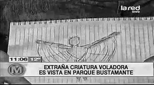 Uncanny Winged Creatures Over Santiago, Chile [VIDEO]