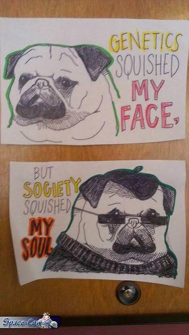 funny squished pug comics