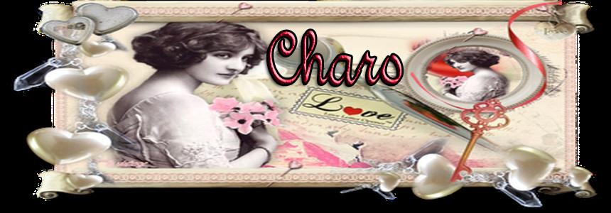 El  Blog  de  Charo