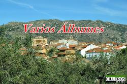 VARIOS ÁLBUMES VIII