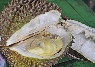 daging buah durian