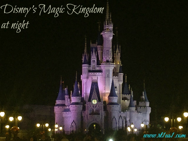Reviews of Disney's Magic Kingdom Attractions at Night