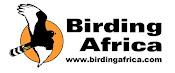 Birding Africa