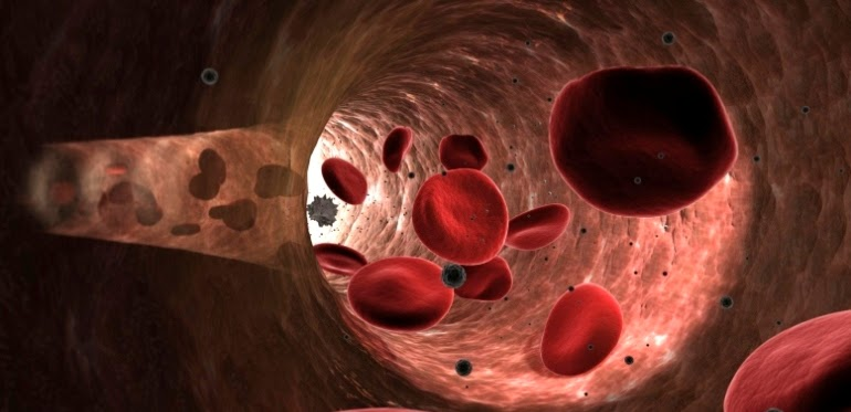 ultram and blood thinners
